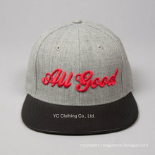 Custom High Quality 3D Embroidered Logo Hip Hop Snapback Cap