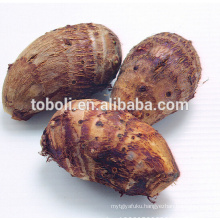 Chinese fresh taro