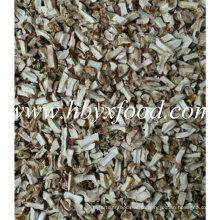 Secado, shiitake, cogumelo, grânulo, spawn