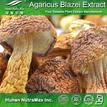 High Quality Agaricus Blazei Extract (Polysaccharides 10%~50%, 4: 1~20: 1)