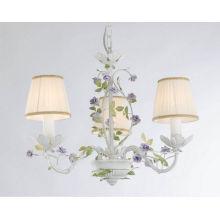 European Home Decor Gardening Iron Pendant Lights (SD1121/3)