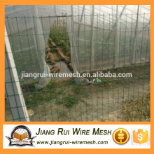 Alta qualidade baixo preço holland wire mesh
