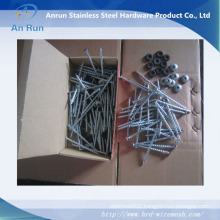 Umbrella Head Roofing Nail with Plastic Washer