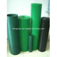 PVC Welded Wire Mesh (HPZS5004)