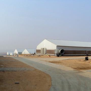 Galpones prefabricados de aves de corral y equipamiento completo para el servicio One Stop