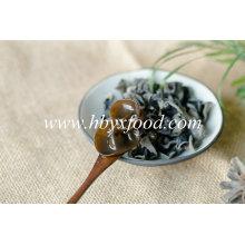 Champignon noir séché Champignon auriculaire en bois Agaric en gros