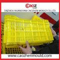 Пластмассовая пресс-форма для инъекций / фруктов в Китае