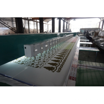 Chenille Embroidery Machine (chain stitch+towel stitch)