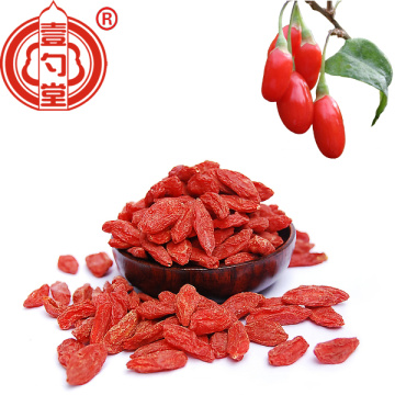 Superfood-Rich Superfood Goji Berries Raw Organic