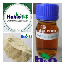Tanning, Detergent, Biodiesel Chemicals / Catalyst / Enzyme Lipase