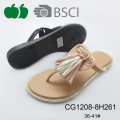 2017 New Model Ladies Plastic Slippers