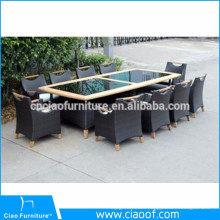Tropical Style Aluminum Frame 10 Piece Dining Table