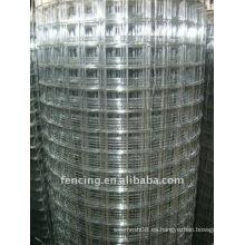 ISO Galvanized Welded Wire Mesh (fabricante)