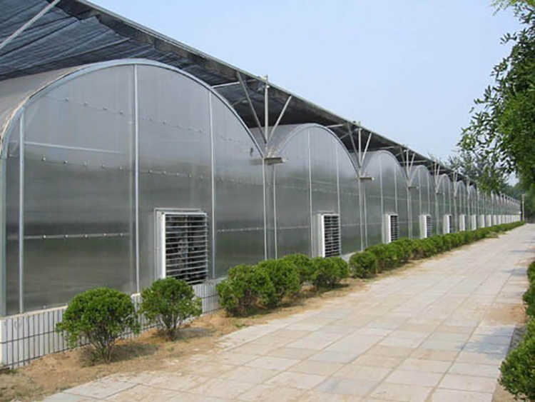 Type PC Greenhouse