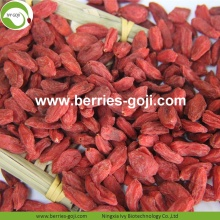 Vente en gros de la nutrition sains Baies Goji faible en pesticides