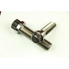 High quality Torx Head Titanium (M6-M14) bolt