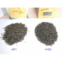 China green tea El Taj quality 9371 with EU standard tea manufacturer