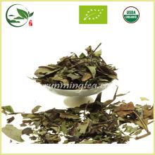 Fresco orgânico chinês Pai Mu Tan chá branco