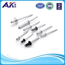 DIN7337 Aluminium, acier inoxydable, acier Rivet aveugle