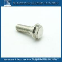 Qualität erste M10X20 AISI 304 Edelstahl Flanschschraube