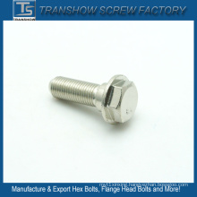 Quality First M10X20 AISI 304 Stainless Steel Flange Screw