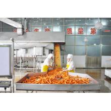 Venda direta da fábrica de cenoura seca ao ar