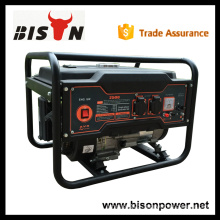 BISON CHINA TaiZhou OHV 2kv Air-Cooled Gasoline Small Generator AC Alternator