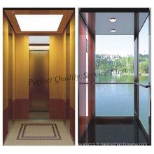 Glass Residential Home Elevator avec une bonne décoration