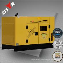 BISON Chine 11KW 11KVA AC à eau monocommande refroidie 11kv Container Power Generator