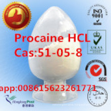 99% Procaine Hydrochloride, Procaine Hci, 51-05-8