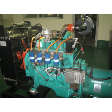 Natural Gas Generator Set (BCX30)