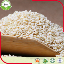 Export Natural Organic White Sesam