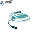 Amored MPO/MTP fiber trunk cable