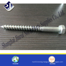 Made in China Wood Screw