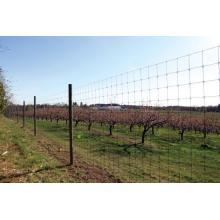 Field Livestock Wire Grassland Fence