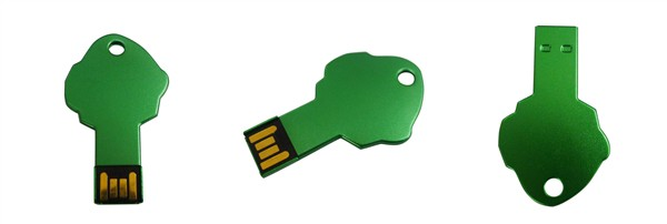 tree shape key usb memory disk