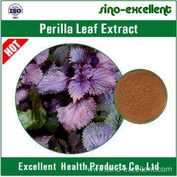 natural Perilla Leaf Extract