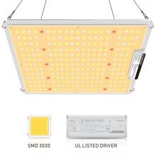 LED élèvent des lumières pour les systèmes de culture hydroponiques