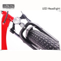 Neues Design 48V1000W 20 '' niedriger Preis elektrisches Fahrrad, fetter Reifen e Fahrrad, das Fahrrad faltet