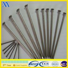 Certifié ISO 9001 en acier inoxydable (XA-CN011)
