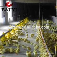 Granja avícola Crianza en tierra Equipo de pollos de engorde