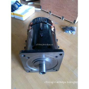 DC series DC traction motor