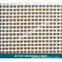 Polyester Plain Weave Mesh Fabric