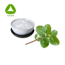 Food Additive Peppermint Extract Powder