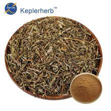 Scutellaria barbata extract powder