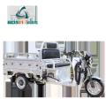 3-колесный электрический популярный мотор электрический грузовой трик