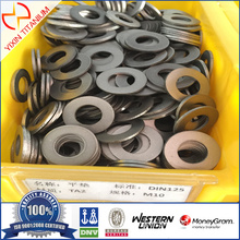 Pure Titanium GR2 Washer DIN 125