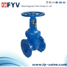Ductile Iron Rising Stem Gate Valve