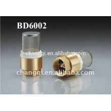 Check Valve With Filter