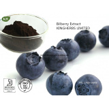 Bilberry Extract Anthocyanidins 5% 10% 35% by UV